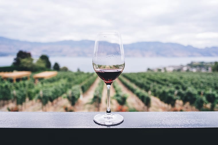 A glass of wine sits on top of a metal railing amidst the backdrop of an expansive vineyard