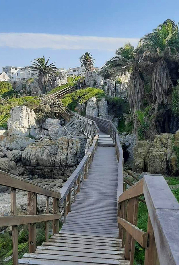 A Western Cape road trip is never complete without a visit to the popular holiday town of Hermanus.