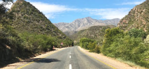 A Western Cape road trip is a great way to rediscover the beauty and diversity of South Africa.